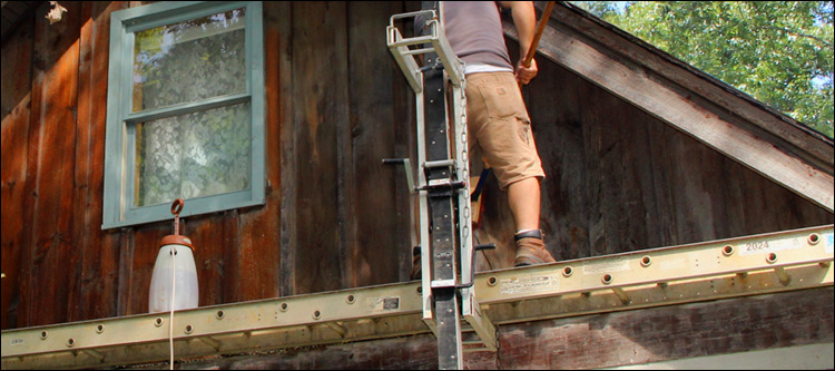 Log Home Washing Service